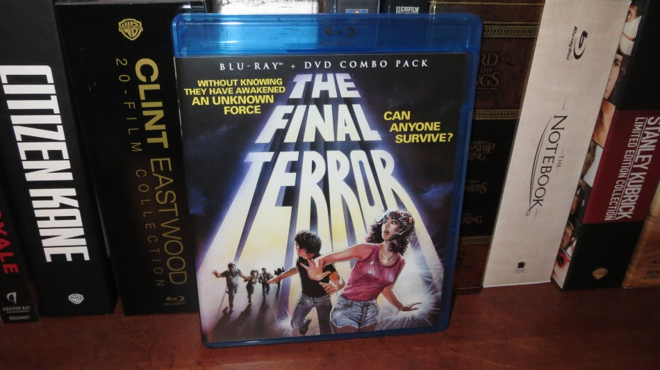 The Final Terror (cover)